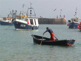 Fisherman rowing in harbour