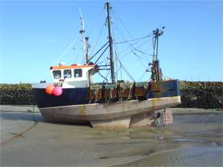 Same harbour at low tide