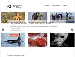 Screenshot from Linguetic website